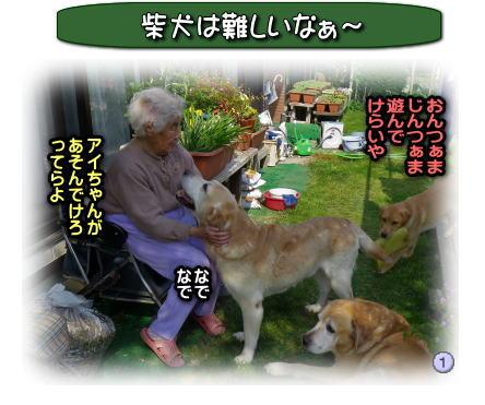 201270718A.jpg