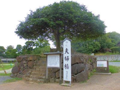 7.9八重垣神社3