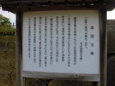 7.9八重垣神社4