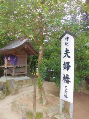 7.9八重垣神社8