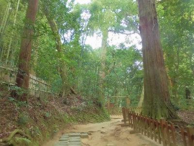 7.9八重垣神社11