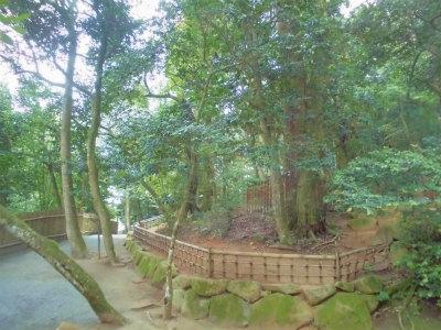 7.9八重垣神社15
