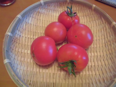 7.17こくうまトマト