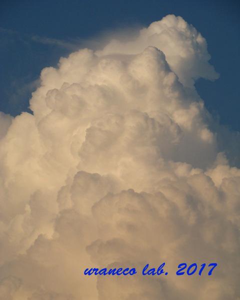 8月22日入道雲