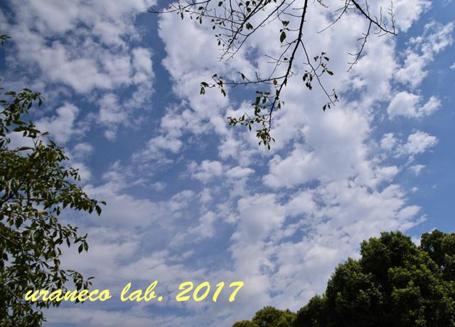 9月4日秋の空