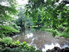 ヒプノセラピー スピリチュアルライフ 札幌植物園