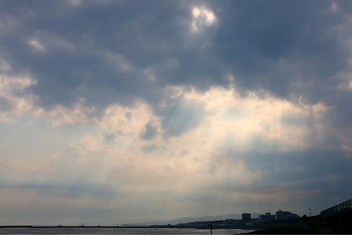 scenery0723アメショ_04