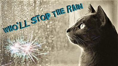 Rain1_convert_20170815093005.jpg