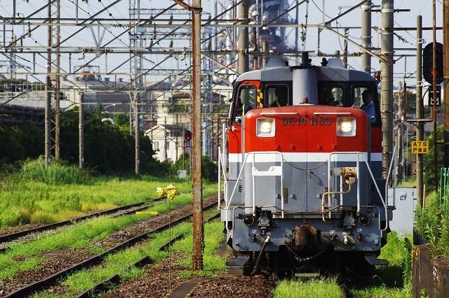 IMGP7486.jpg