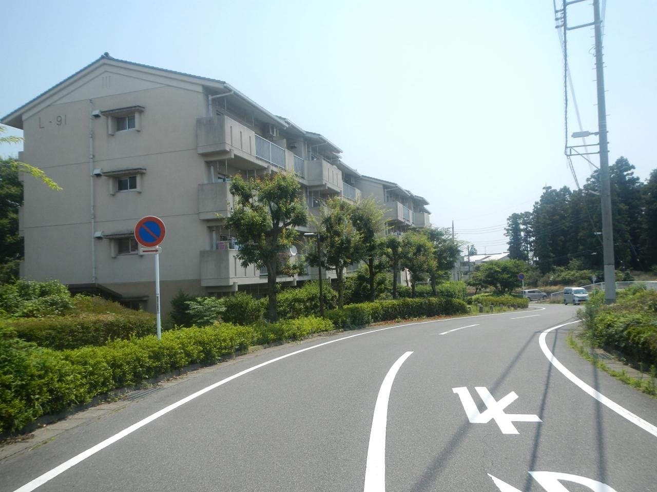 DSCN1146 (1280x960)