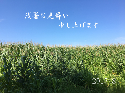 2017残暑見舞い