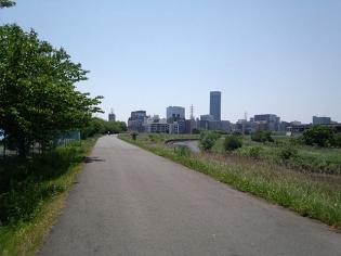 新横浜駅土手