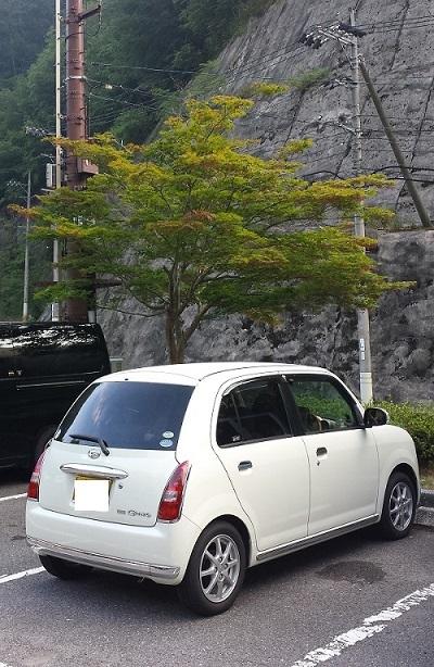 170716_yamaguhi02.jpg