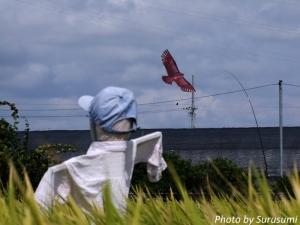 案山子と鳥の凧