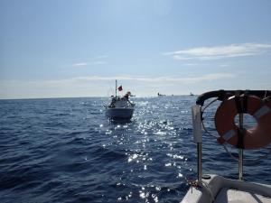 P9100011 イカ船団の周りで