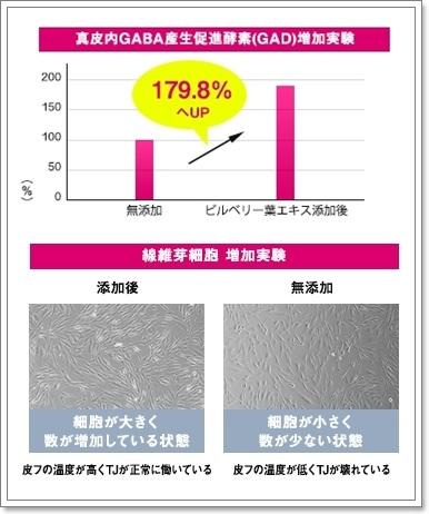 ベストコスメ5冠受賞!GABA生産促進線維芽細胞増加、ハリ・弾力170%アップ↑敏感肌ブランド【ディセンシア アヤナストライアルセット】口コミ。