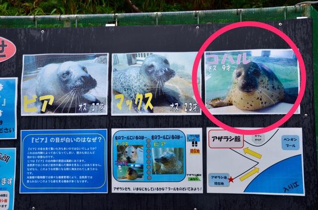 fc2blog_20170910033500771.jpg