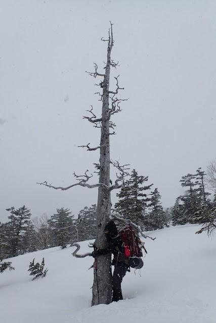 20170325十石山31
