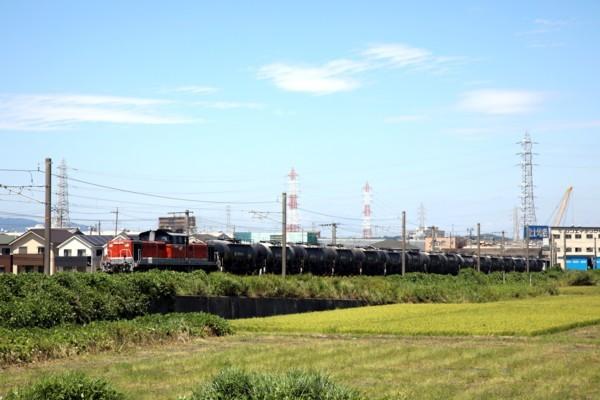 IMG_7619.jpg