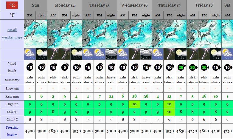 Mt Forecast