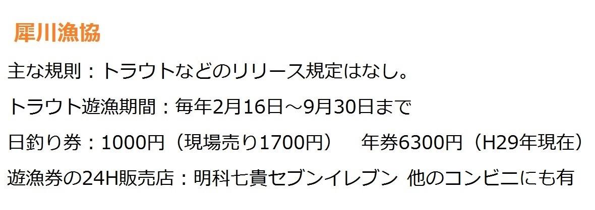 新規22223
