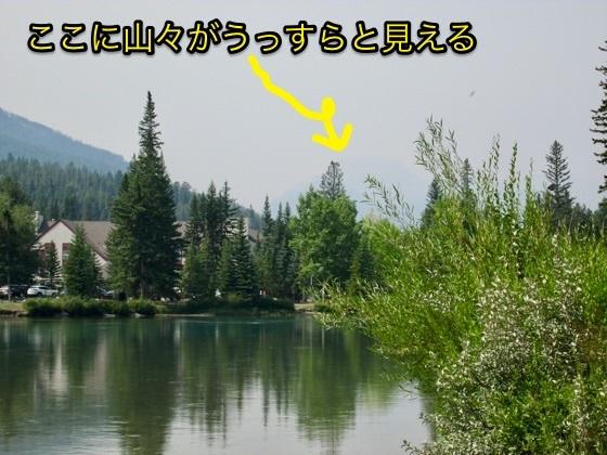 20170813070848597.jpg
