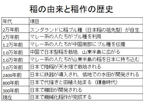 日本稲作の由来と歴史
