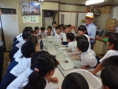 亀田さんからホタルの幼虫飼育と観察法を