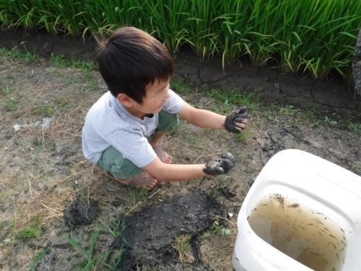 さいたま水族館 (48)