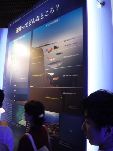深海展 (6)