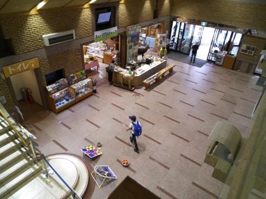 栃木自然博物館 (9)