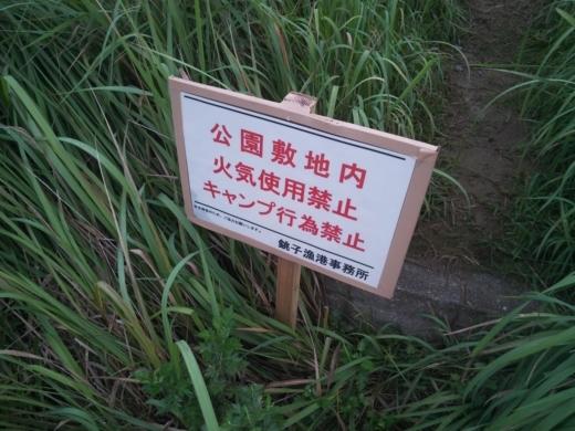 いいおかみなと公園 (38)