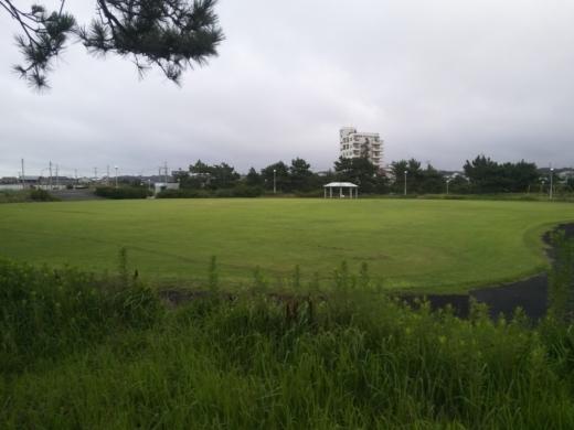 いいおかみなと公園 (40)
