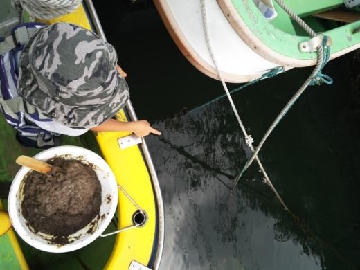 ①初船釣り (7)