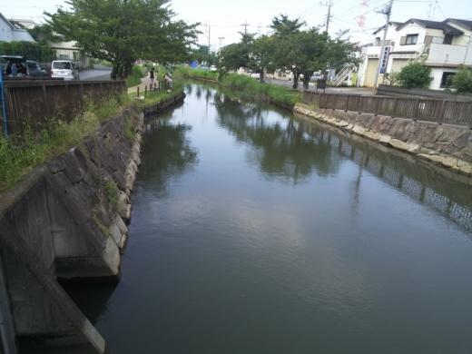 葛西用水 (7)