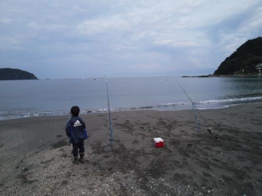 冨浦漁港で釣り (14)