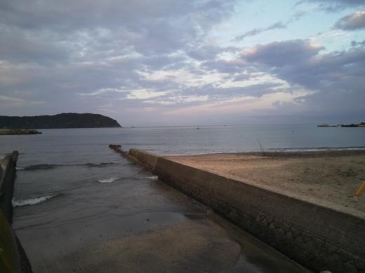 冨浦漁港で釣り (16)