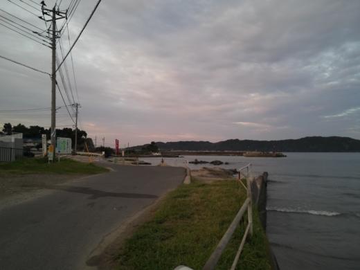 冨浦漁港で釣り (17)