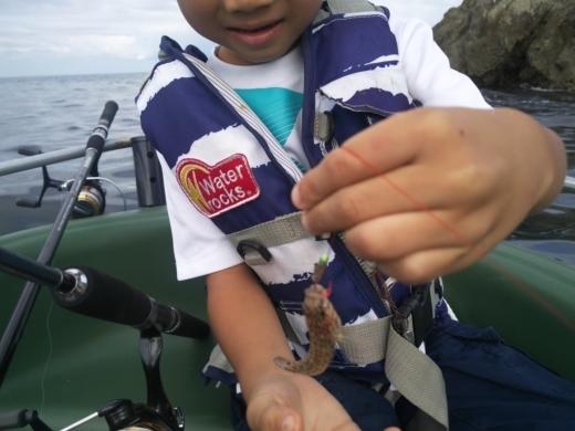 冨浦漁港で釣り (30)