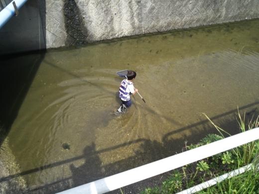 冨浦漁港で釣り (44)
