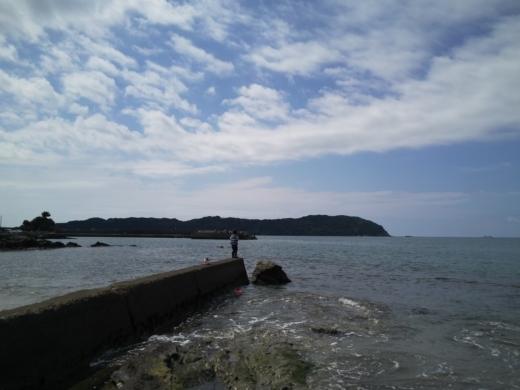 冨浦漁港で釣り (45)
