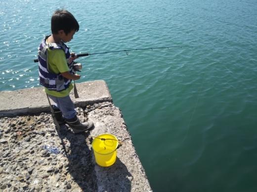 冨浦漁港で釣り (57)