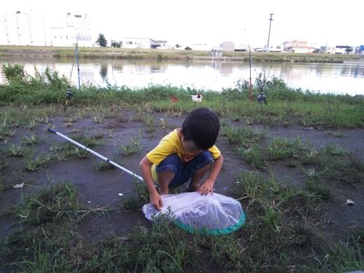 中川(三郷)釣り (12)