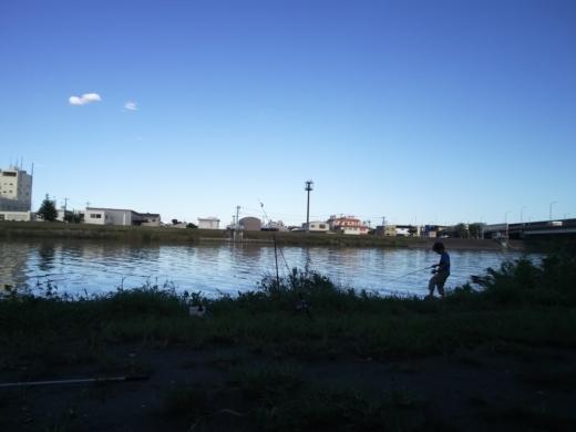 中川(三郷)釣り (18)