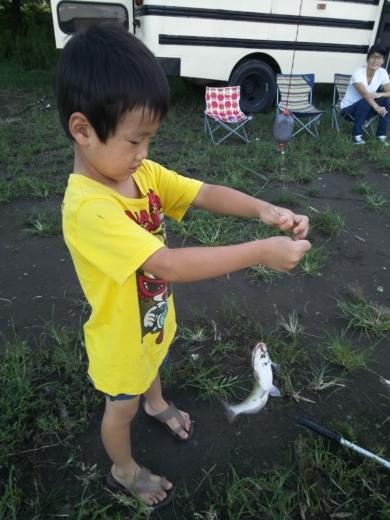 中川(三郷)釣り (23)