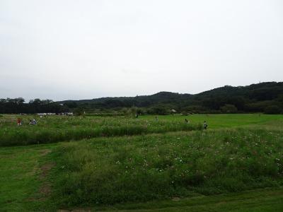 170916-10.jpg