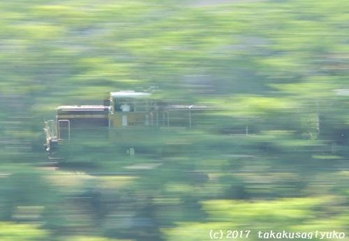DSC_7914a1.jpg