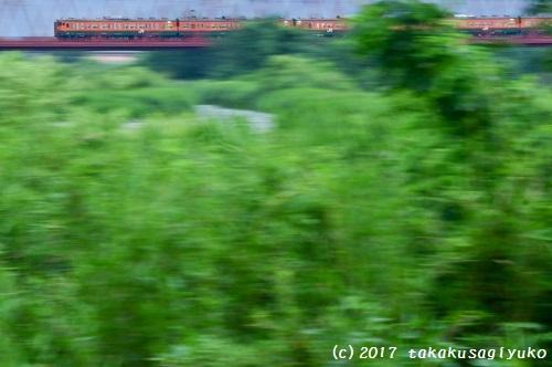 DSC_9471b2.jpg