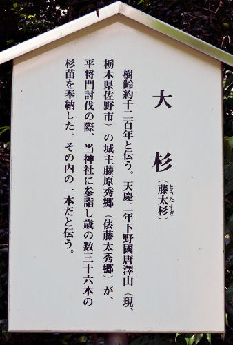 170711nukisaki68.jpg