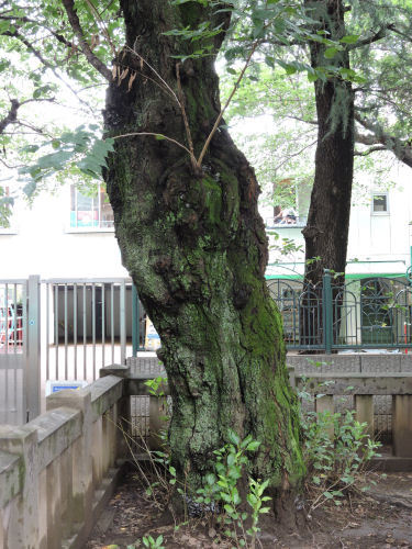 170902urawa33.jpg